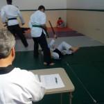 testing taekwondo students