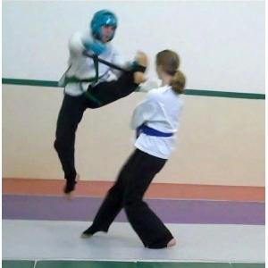 taekwondo fighting