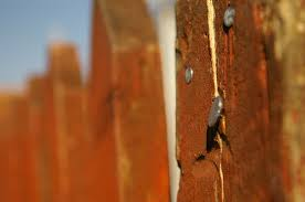 Nails In The Fence