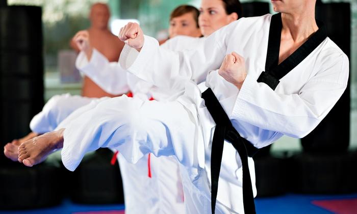 Martial Arts and self-defense classes